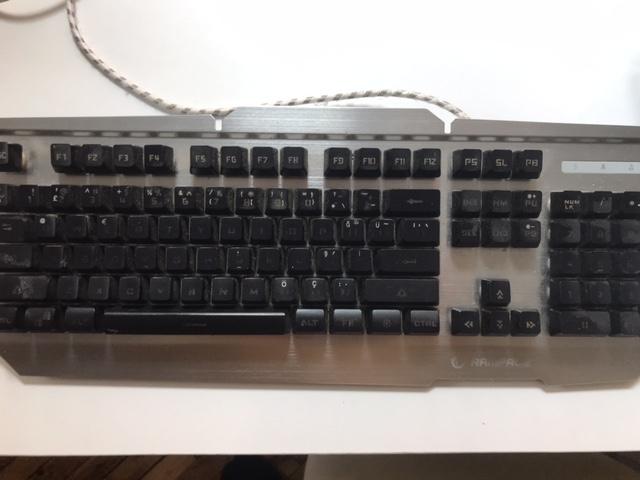 everest klavye